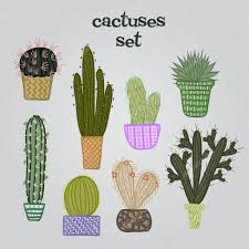 Cute Succulent Pots Flat Colorful Illustration Of Succulent Plants And Cactuses In