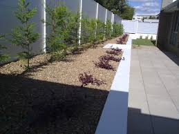 Retaining Wall Garden Bed by Retaining Wall Garden Bed And Plants Archoz Landscape Pty Ltd