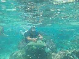 dream honeymoon mo u0027orea french polynesia overwater bungalows