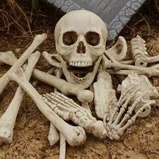 online buy wholesale plastic skulls from china plastic skulls