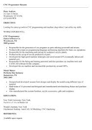Resume Sample For Programmer by Senior It Manager Resume Exampleprogrammer Resume Example