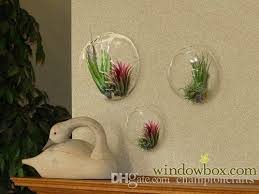 Wall Mounted Glass Flower Vases Set Of 3 Wall Terrarium Bubbles Diy Glass Wall Hanging Mounted