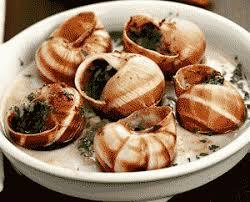 escargot cuisiné recette escargots babbouche cuisine tunisienne back to the