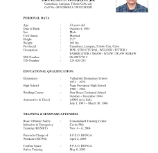 Heavy Equipment Mechanic Resume Examples by 100 Heavy Equipment Mechanic Resume Best Web Developer
