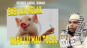 Meme Babi - meme lucu gambar rokok dp bbm lucu untuk hari ini