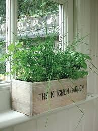 window herb harden kitchen window herbs kitchen window herb garden indoor wooden box