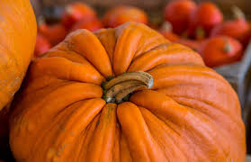 pumpkin spice fortune