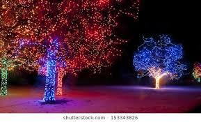 trail of lights denver denver botanic gardens images stock photos vectors shutterstock