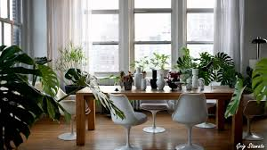 Homes Interior Decoration Ideas by Plants And Greenery In Your Interior Design Youtube