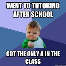 Education Memes - 180 best educational memes images on pinterest funny photos