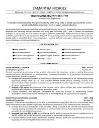 resume technical program manager resume