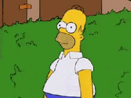 Homer Simpson Meme - disappear the simpsons gif find share on giphy