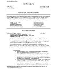 executive resume pdf marketing resume format executive sle manager pdf mid lev sevte