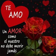 bonitas de rosas rojas con frases de amor imagenes de amor facebook cariñosos y tiernos mensajes con rosas rojas hermosas ramos de