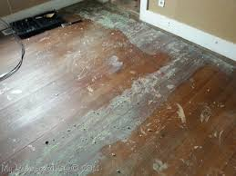 carpet glue removal hardwood floors carpet vidalondon