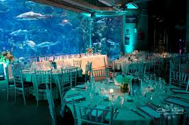 themed wedding ideas unique wedding ideas aquarium venues photos invitations tips