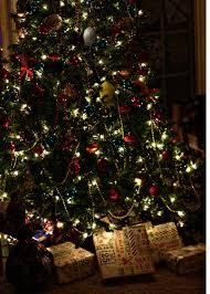 christmas 2014 elastamom u0027s excerpts