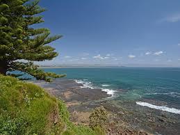 whale watch ocean view cottage culburra beach australia
