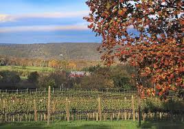 in fall leaf peeping in virginia wine country pittsburgh post gazette