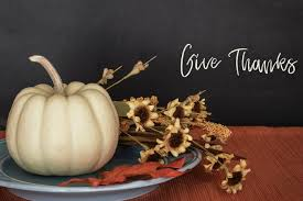 things you didn t about thanksgiving