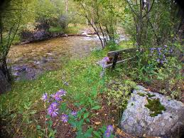 2 5 acres cottonwood creek in backyard vrbo