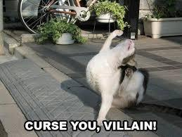 Villain Meme - curse you villain cat meme cat planet cat planet