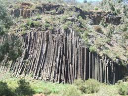 melbourne native plants organ pipes national park wikipedia