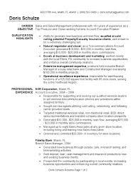 Warehouse Picker Job Description For Resume by Account Executive Resume Sample Sales Warehouse