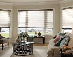 Best Blinds For Bay Windows Bay Window Treatments Ideas Blindsgalore Com