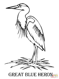 blue heron coloring page free printable coloring pages