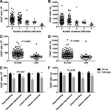 diabetes causes bone marrow autonomic neuropathy and impairs stem