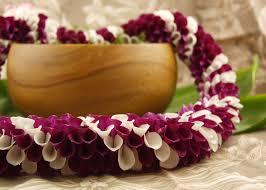 graduation leis alewa fresh hawaiian in white and purple orchids