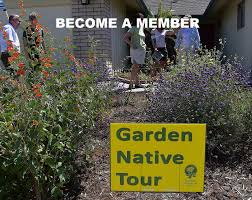 california native plant garden cnps san diego