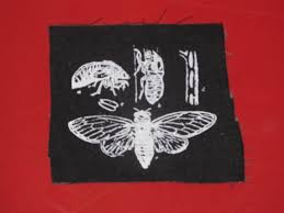 cycle shell punk patch cicada life cycle patch black insect bug