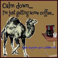 Wednesday Hump Day Meme - calm down i am just getting some coffee good morning wednesday