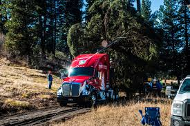 how much does a kenworth t680 cost truck driver gary amoth proud to be hauling u0027the people u0027s tree u0027 in