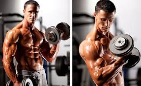 Bench Press Vs Dumbbell Press The Best Of The Best Here Are 20 Gems Of Wisdom You Need To Know
