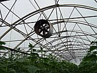 ventilation fans for greenhouses farming agriculture supply shop malaysia ventilation fan exhaust