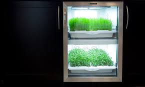 Indoor Gardening by Indoor Gardening Systems Bring Fresh Greens Back To Your Home