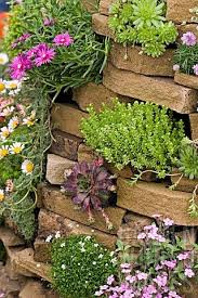177 best rock garden images on pinterest garden ideas gardens