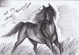 horse pencil sketch pencil number kits pencil art drawing