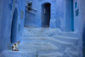 blue city morocco photo essay the blue city of chefchaouen morocco james clear