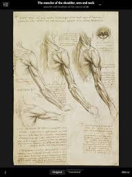100 human anatomy 7th edition martini study guide c1963d01