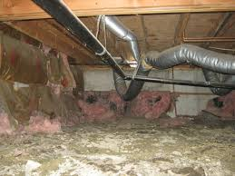rod martin from rod martin u0027s complete basement systems