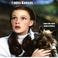 Wizard Of Oz Meme Generator - wizard of oz meme weknowmemes