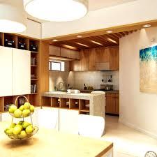 Designer Kitchen Mats by Bathroom Kitchen Divider Gorgeous Dining And Kitchen Divider