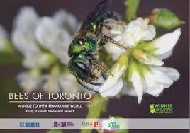 australian native plants society resources bee city canada