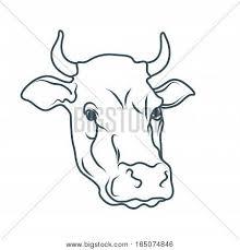 cow images illustrations vectors cow stock photos u0026 images