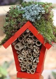 make a lady bug hotel hgtv