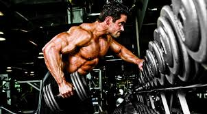 Bodybuilder Bench Press Expert Training Advice Back To The Bench Press Muscle U0026 Fitness